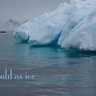 Ice by Rosie Appleton