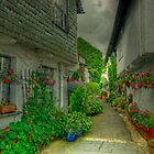The Alley in Bloom by VoluntaryRanger