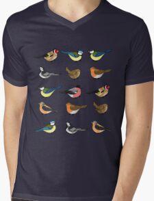 The birds are still singing Mens V-Neck T-Shirt