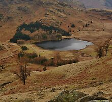 Blea Tarn from Lingmoor Fell by Blagnys