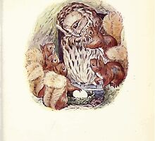 The Tale of Squirrel Nutkin Beatrix Potter 1903 0049 Old Brown Owl Looking at the Egg by wetdryvac