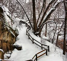 Ledges State Park in Winter by cwwycoff