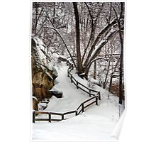 Ledges State Park in Winter Poster