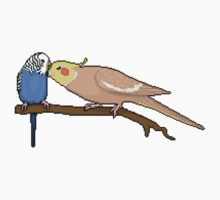 Pixel / 8-bit Parrot: Budgie and Cockatiel Kids Clothes