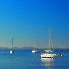 Quiet Morning by jean-louis bouzou