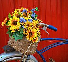 Bike Basket Bouquet by cwwycoff
