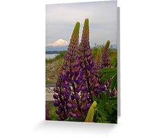 lupin and mt baker Greeting Card