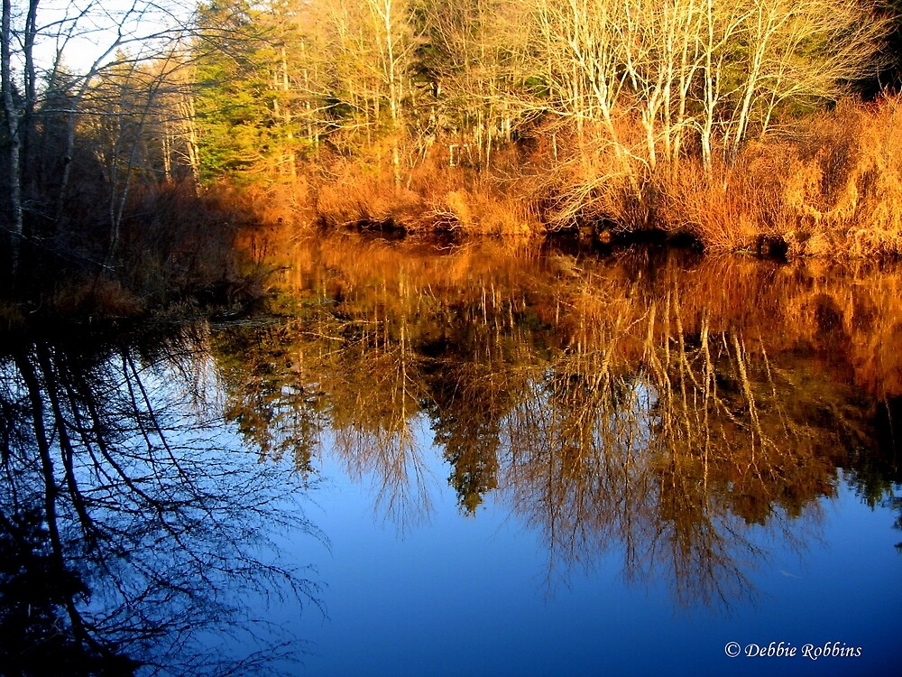 A Beautiful Mirror by Debbie Robbins
