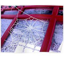 Icy Cobweb Poster