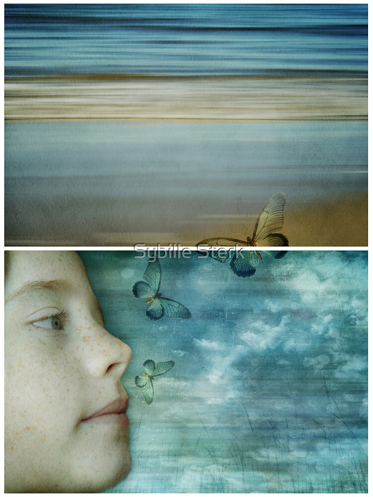 Still Dreaming - Diptych by Sybille Sterk