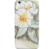 White Wild Rose iPhone Case/Skin