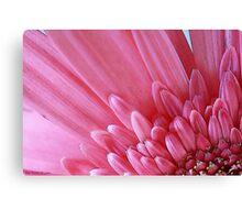 Pink Flower Petals Canvas Print