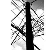 Wire Crazy Photographic Print