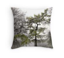 Winter103 Throw Pillow