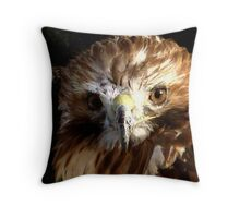 Red Tail Hawk Throw Pillow