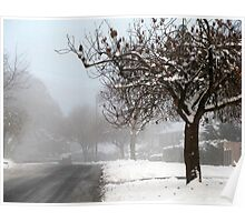 Snowy suburbia Poster