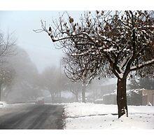 Snowy suburbia Photographic Print