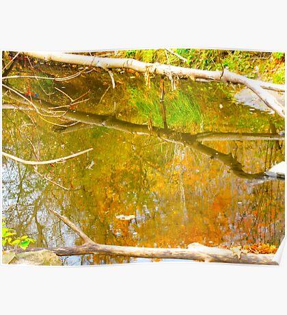 Autumn Waters below Poster