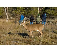 Doe, where is the deer! Photographic Print