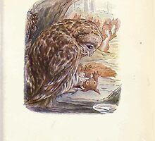 The Tale of Squirrel Nutkin Beatrix Potter 1903 0057 Brougt Him in To Skin Him by wetdryvac