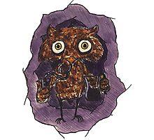 Owlin' Photographic Print