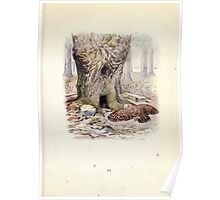The Tale of Squirrel Nutkin Beatrix Potter 1903 0013 Old Brown Owl Poster