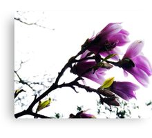 Purple Bower Canvas Print