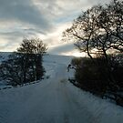 The North Yorks Moors 2 by dougie1page2