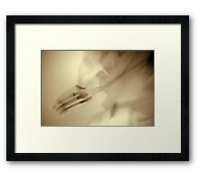Whimsical Lilies Series. No 6 Framed Print