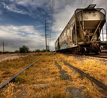 Last of the Tracks by Sue  Cullumber