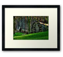 No Chickens Framed Print