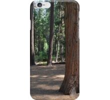 Big trees, forest in Yosemite National Park iPhone Case/Skin