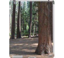 Big trees, forest in Yosemite National Park iPad Case/Skin