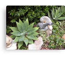 Giant Green Star Plant Canvas Print