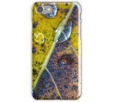 leaf detail iPhone Case/Skin