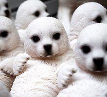 Adorable Seal Pups by Artisimo