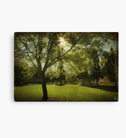 Always Looking For Something Canvas Print