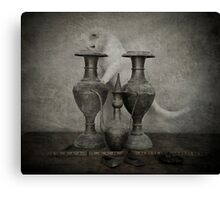 Cat looking into Vase  Canvas Print