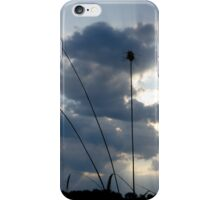 Wheat and Sky iPhone Case/Skin