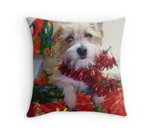 Gidget-in-a-Box Throw Pillow