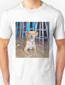 Dog In A Bar T-Shirt