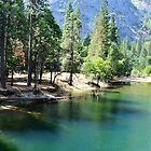 Yosemite National Park landscape photography. Beautiful mountain, summer  green trees and clear water river. by naturematters