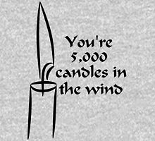 You're 5000 candles in the wind Unisex T-Shirt