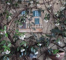 View From My Window With Flowers This Time by joycee
