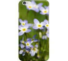 Country Wildflowers iPhone Case/Skin