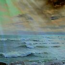 Storm Rage ©  by Dawn M. Becker