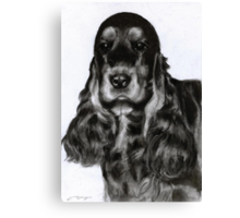 English Spaniel Canvas Print