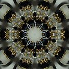 Black and White Kaleidoscope III by Erica Long