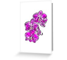 Orchid - 76 Greeting Card