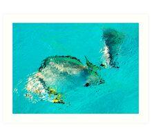 Underwater world Art Print